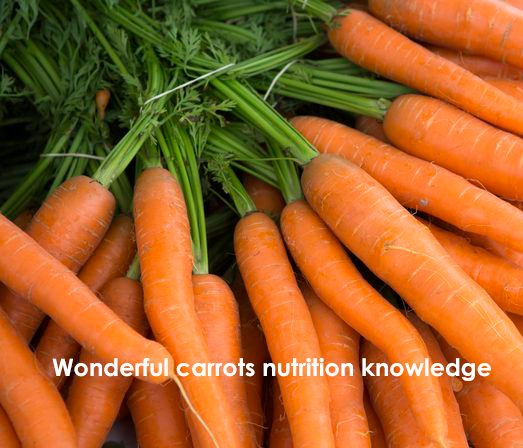 Carrots nutrition