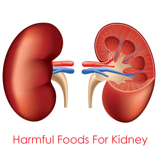 harmful foods for kidney